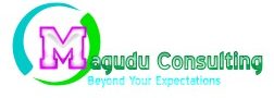To deliver excellent and value added professional services to our clients